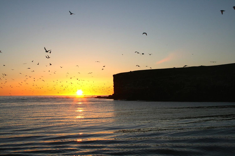 Arctic Sightseeing – Midnight Sun