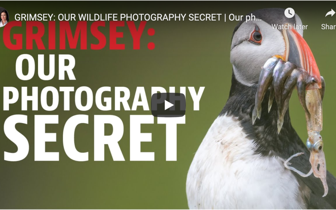 Photographing Grímsey